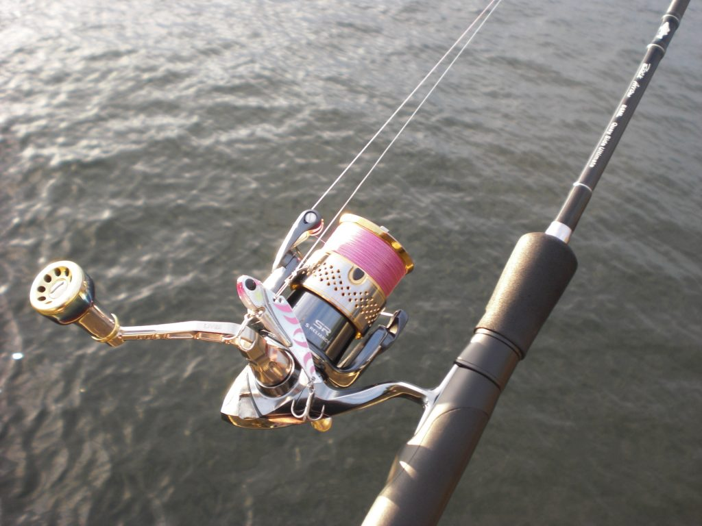 シーバス釣行 ちび冷音